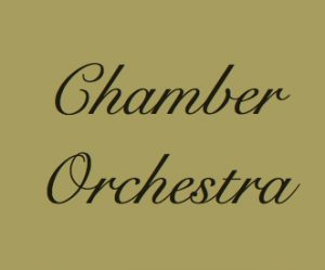 chamber-orchestra-3